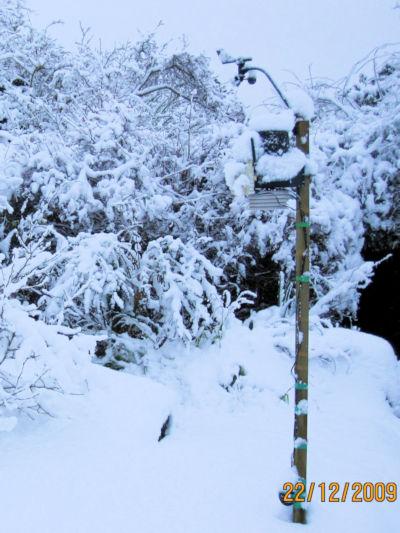 Snow, December 22nd 2009