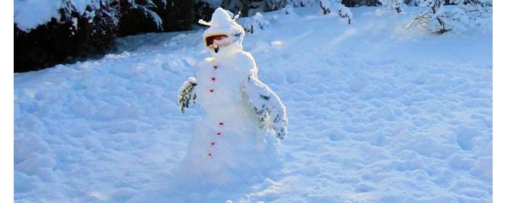 Snowman, winter 2009/10