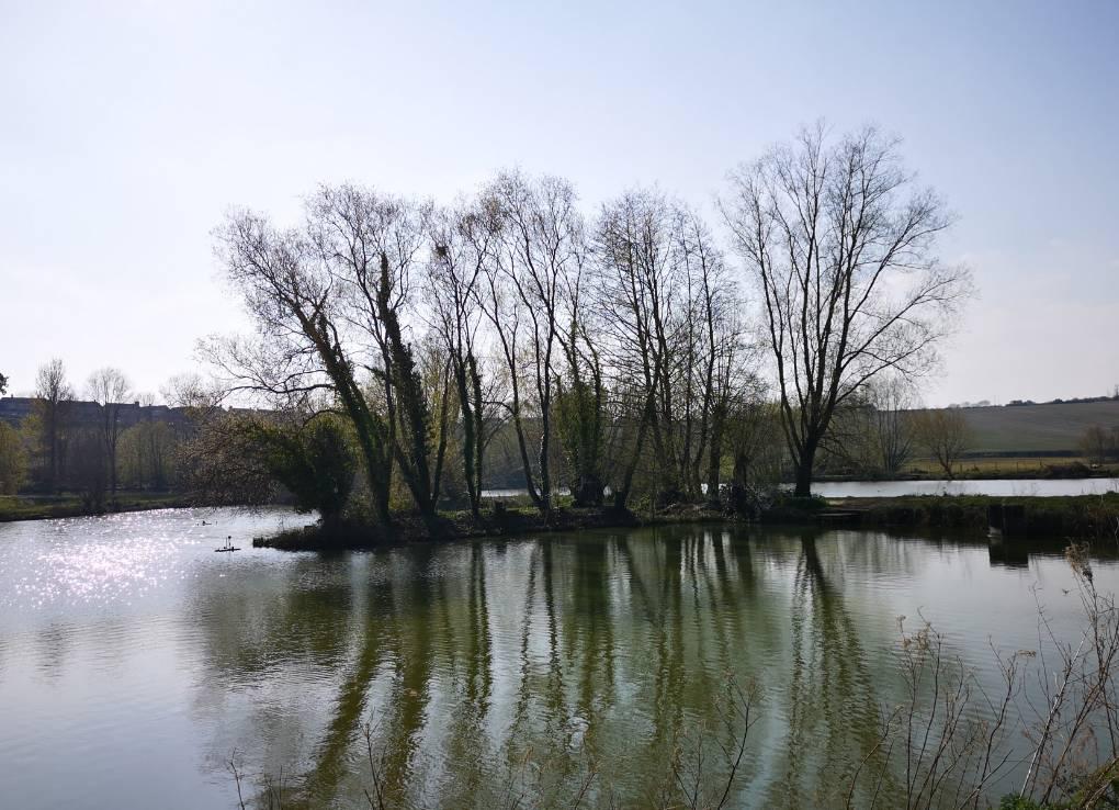 Reflections Somerton, Somerset,UK, sent by glynnadams68