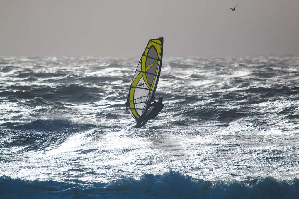 Storm, Windsurfer and Gull Weymouth, Dorset,UK, sent by NMA