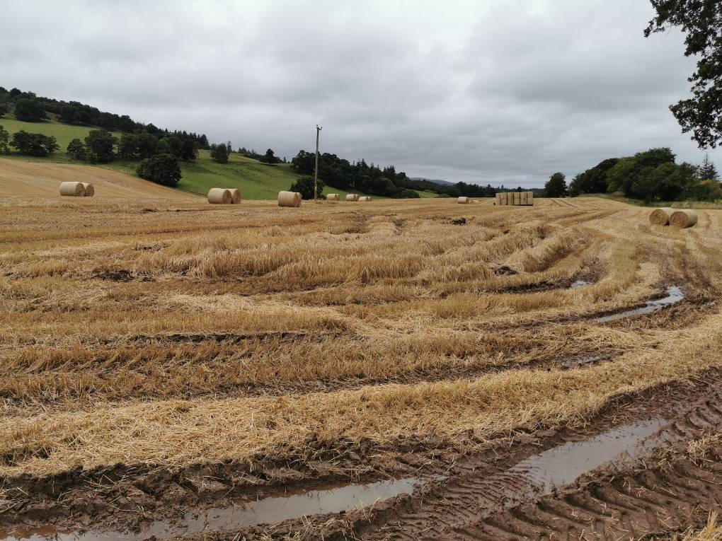 Finishing a wet harvest under grey skies Auchterarder, ,, sent by Uncle Ted