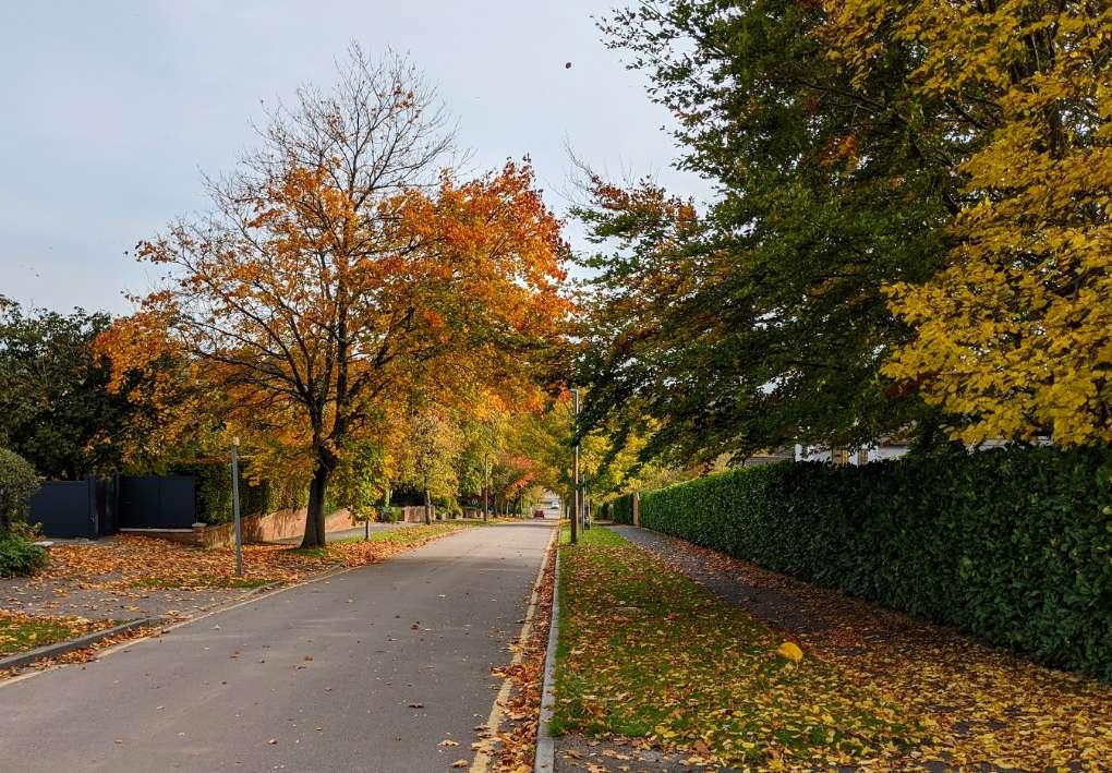 Autumn in Berkhamsted Berkhamsted, Herts,, sent by brian gaze
