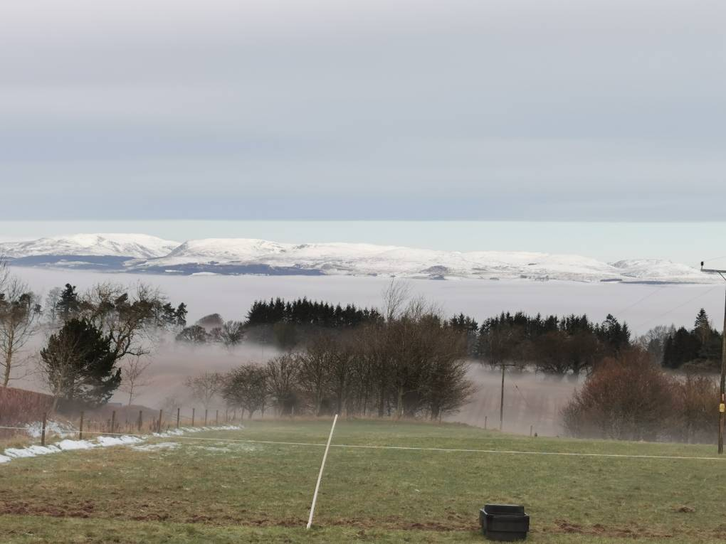 Frost here, mist in Strath, snow on hills Auchterarder, ,, sent by Uncle Ted