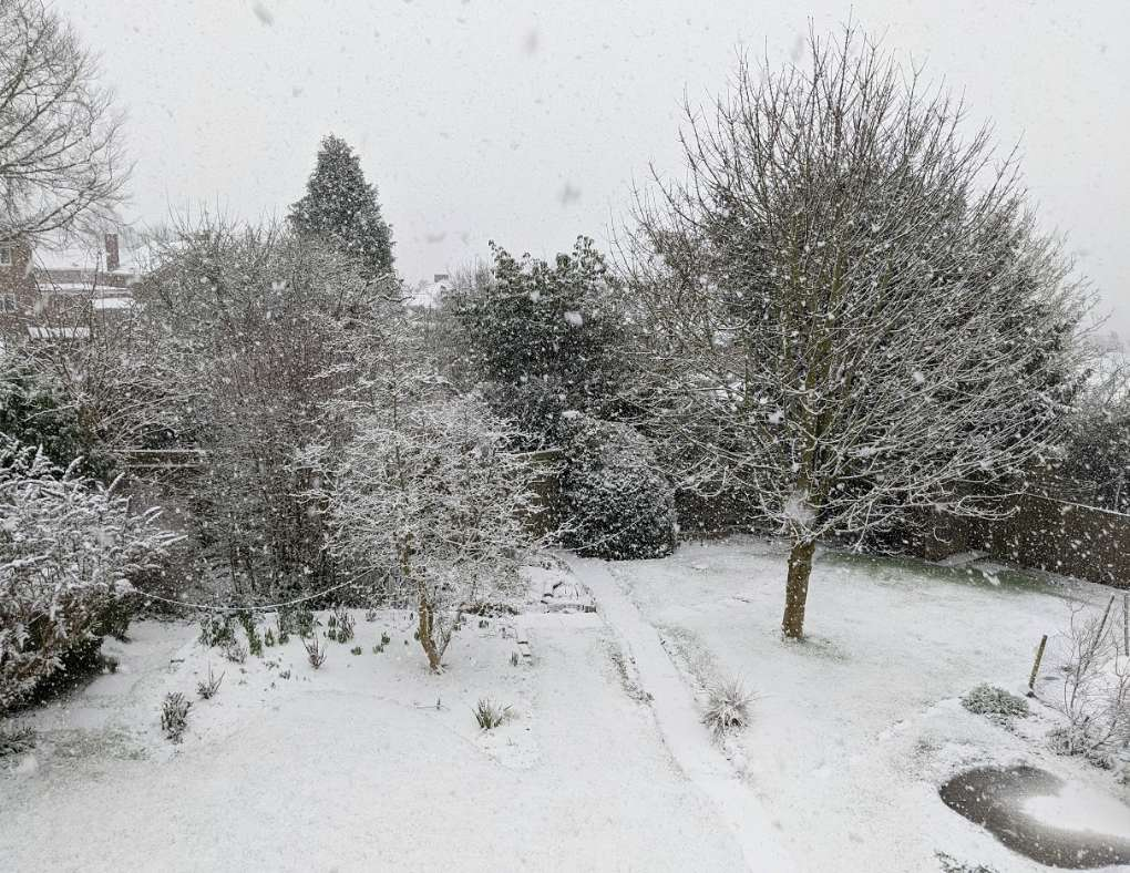 Snow falling thick and fast Berkhamsted, Herts,, sent by brian gaze