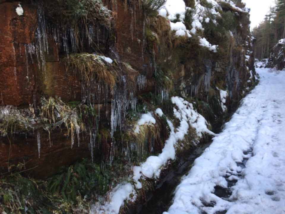 Icicles Grantown on Spey, ,, sent by dizzy daff